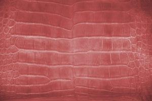 Fine alligator leather